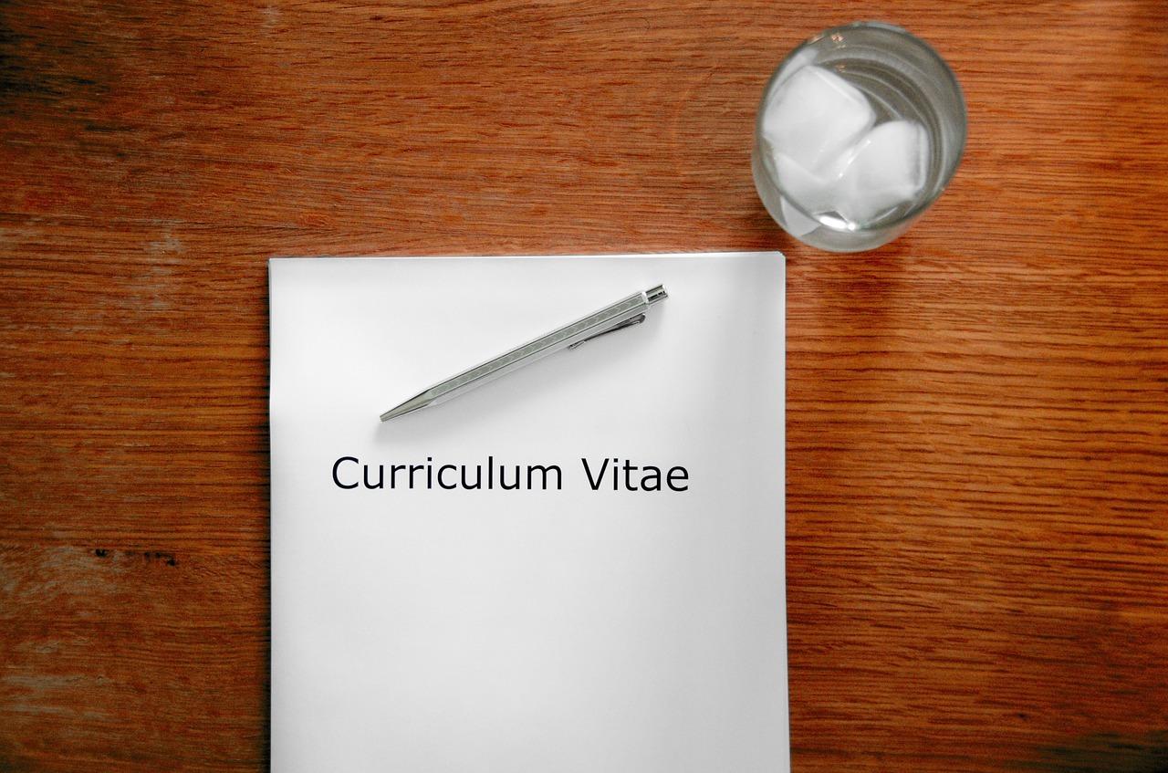 crear curriculum