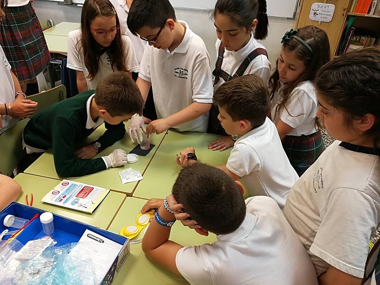 preparando experimentos libro del agua