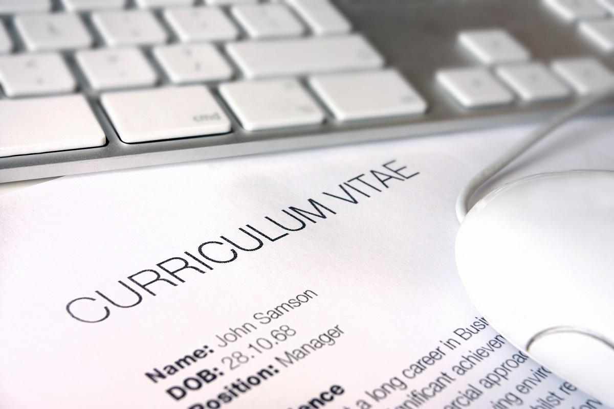 curriculum vitae destacar