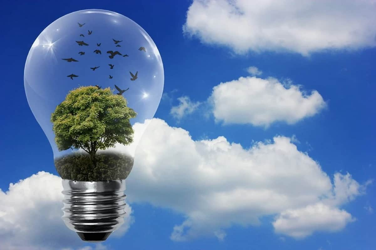 ingenieria energias renovables