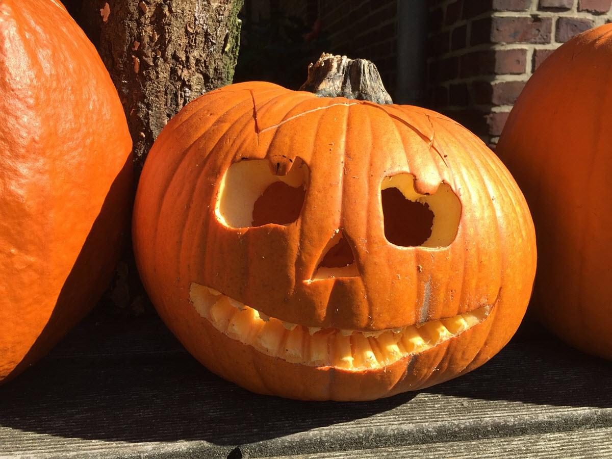unidad didáctica de halloween