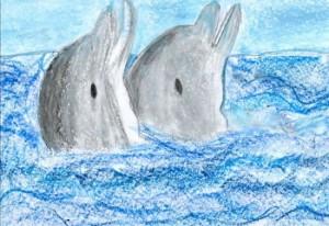 delfines jpg