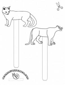marineta gato