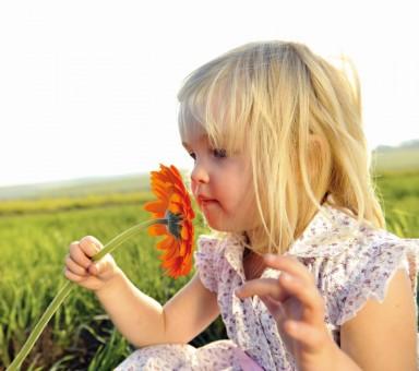 nena flor